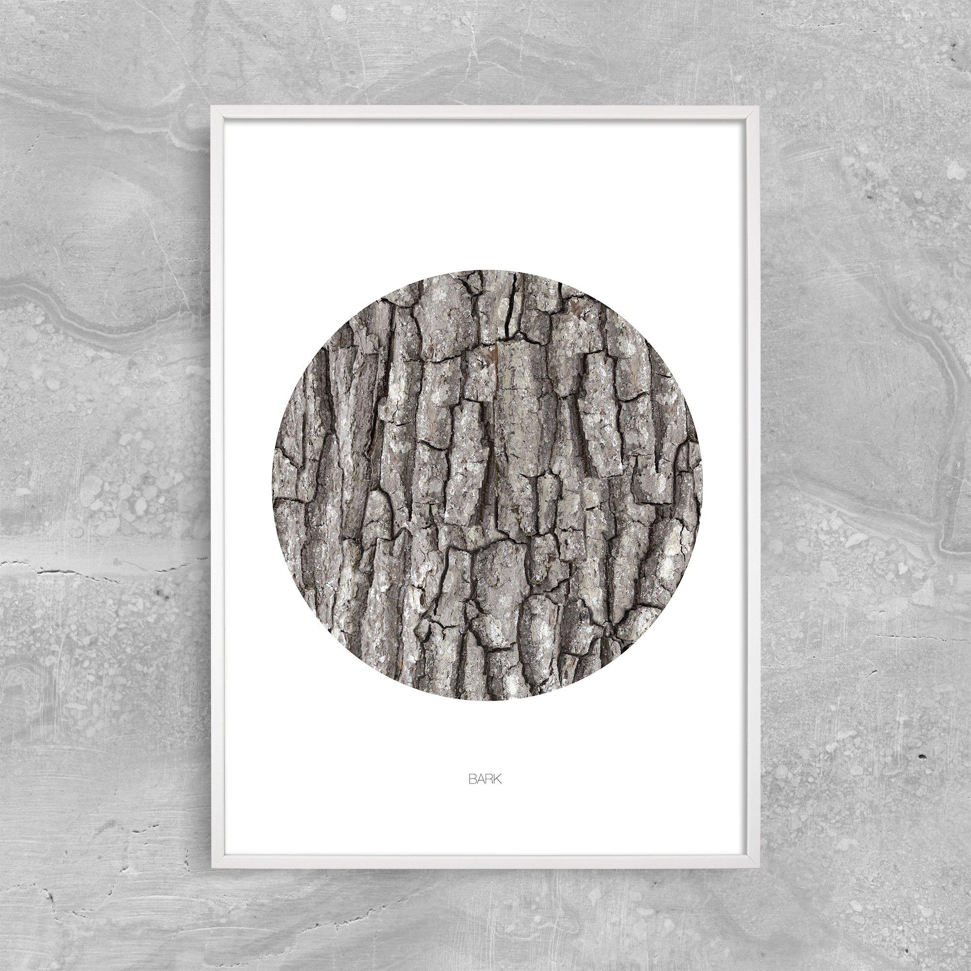 Bark Circle